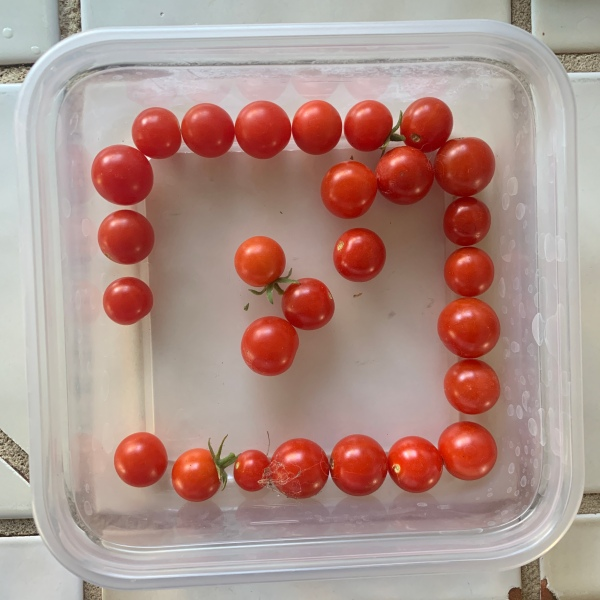 many more tomatoes